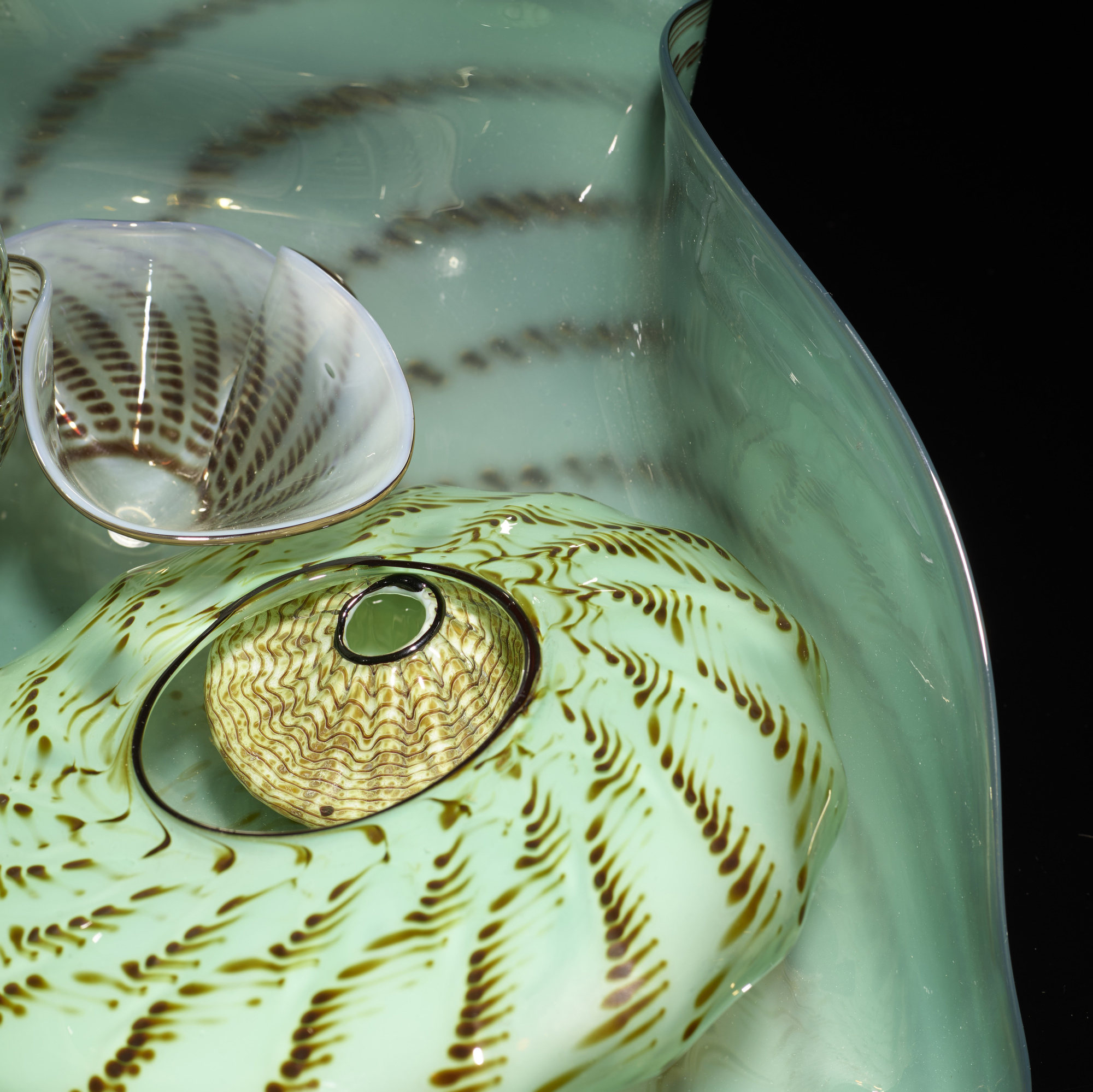 105: Dale Chihuly / Seaform Set (3 of 4)