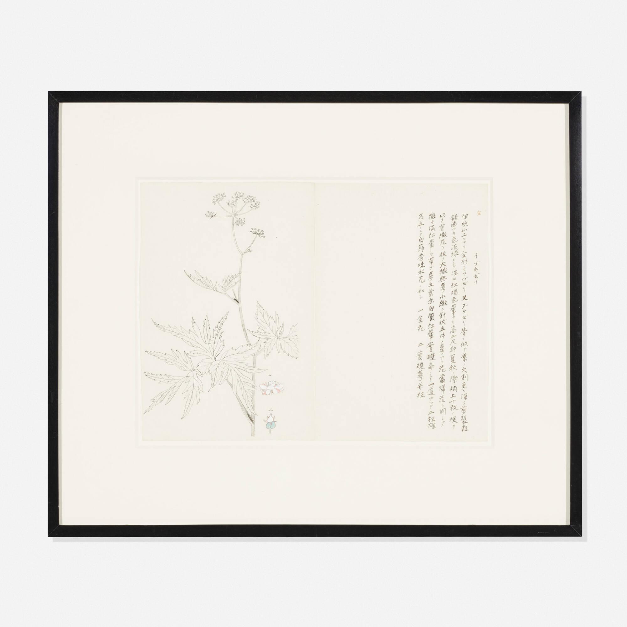 130: Japanese / botanical prints, set of six (2 of 3)