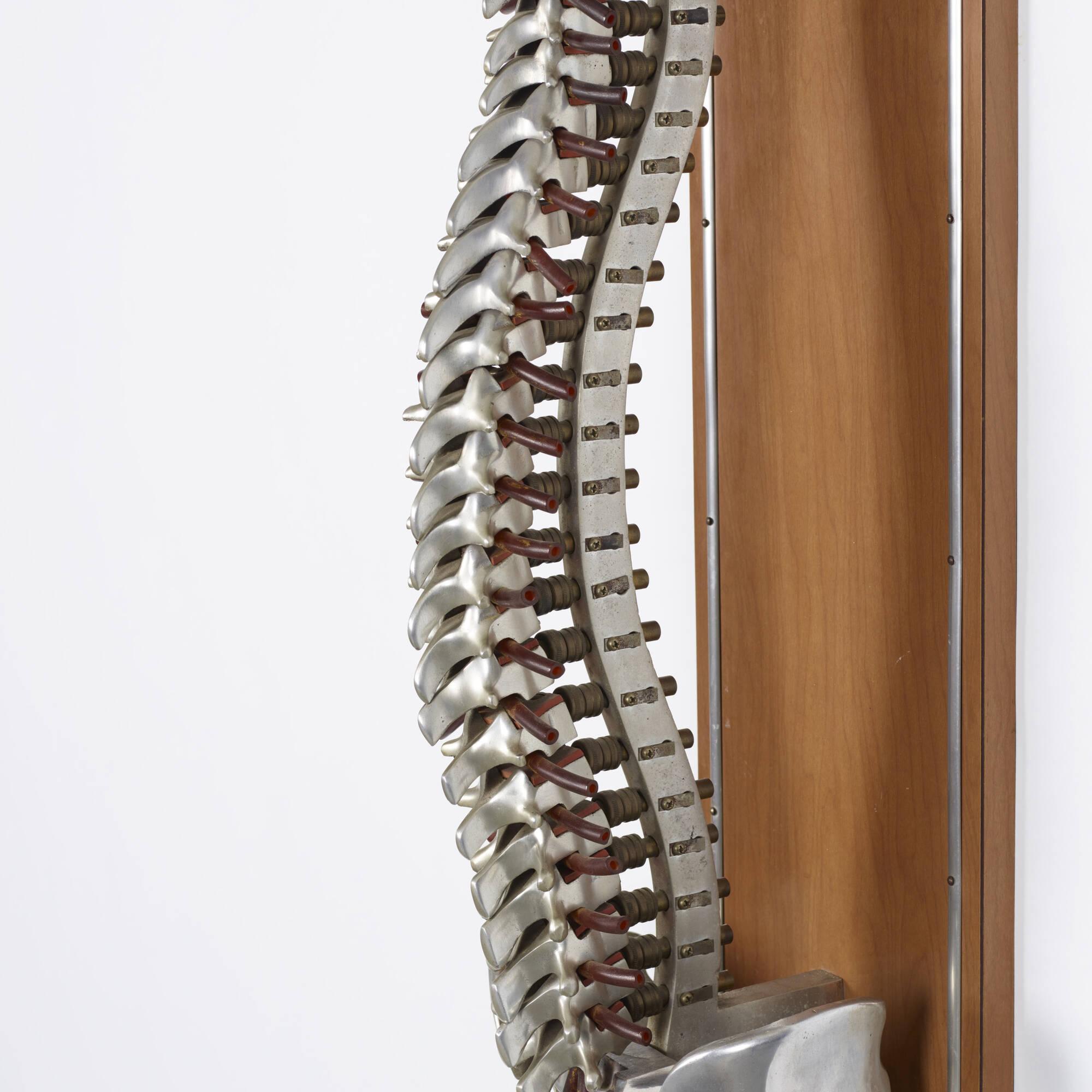 146: Dr. Thurman Fleet / Fleet's Spinal Demonstrator, the Classic Model (2 of 2)