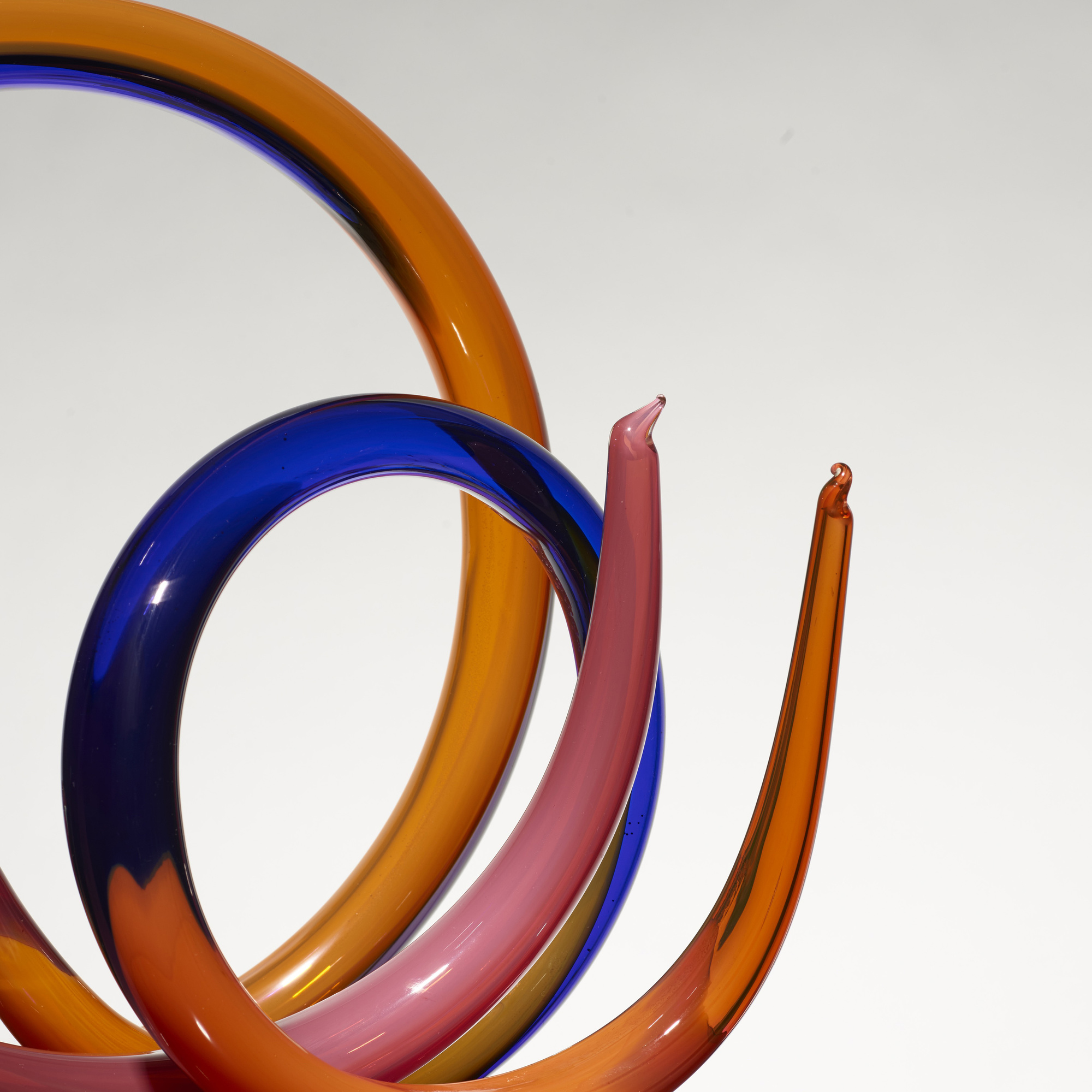 147: Paul Seide / Spiral Neon (2 of 4)