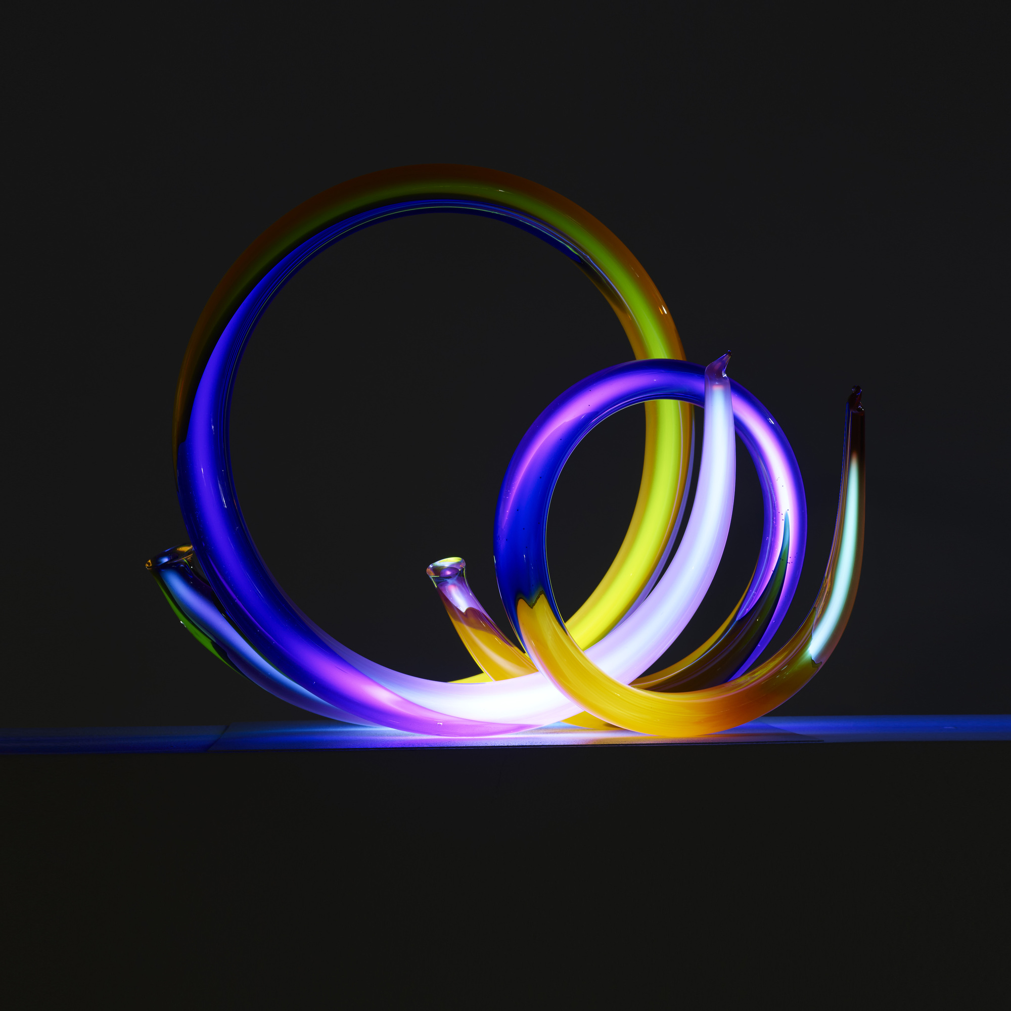 147: Paul Seide / Spiral Neon (4 of 4)