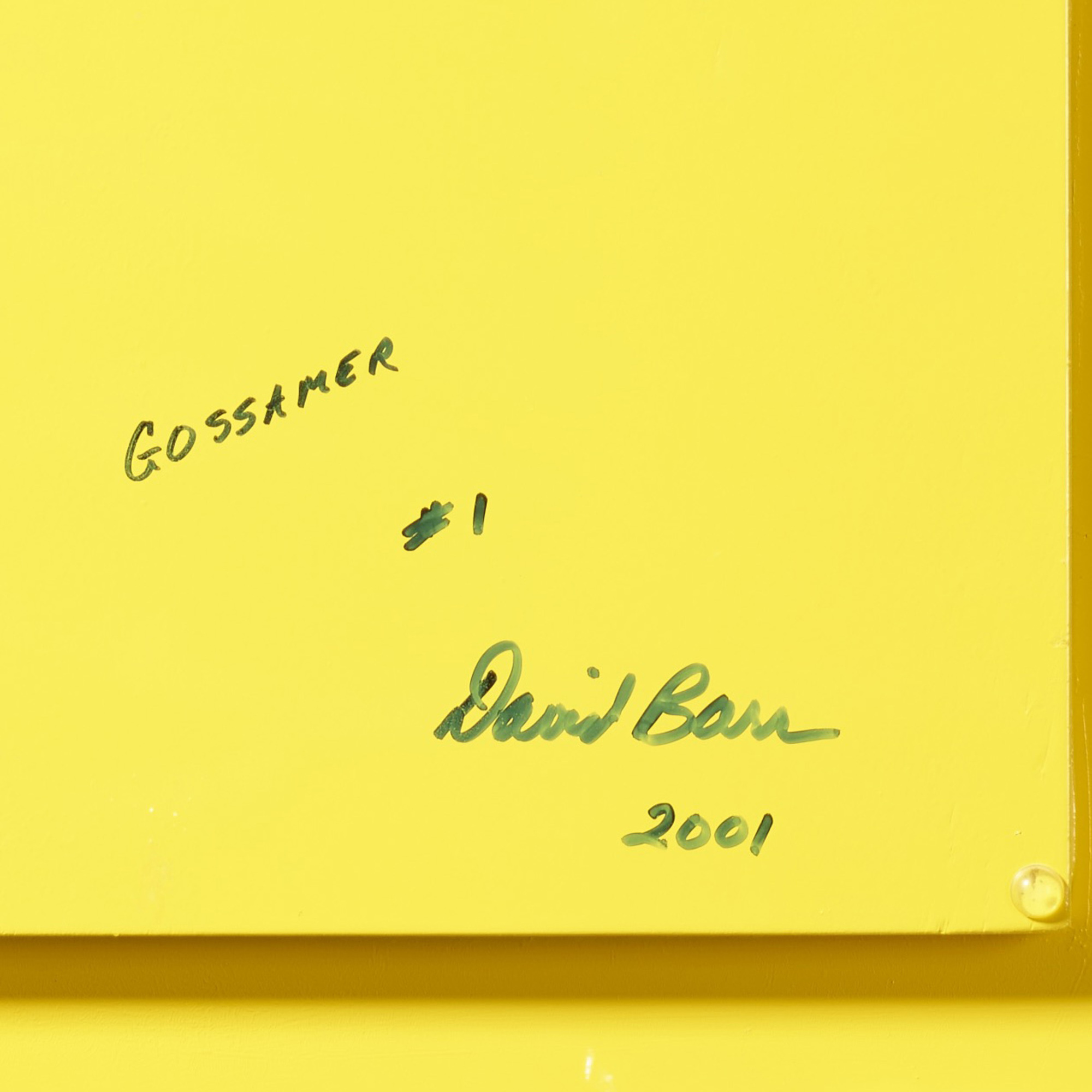 155: David Barr / Gossamer No. 1 (3 of 3)