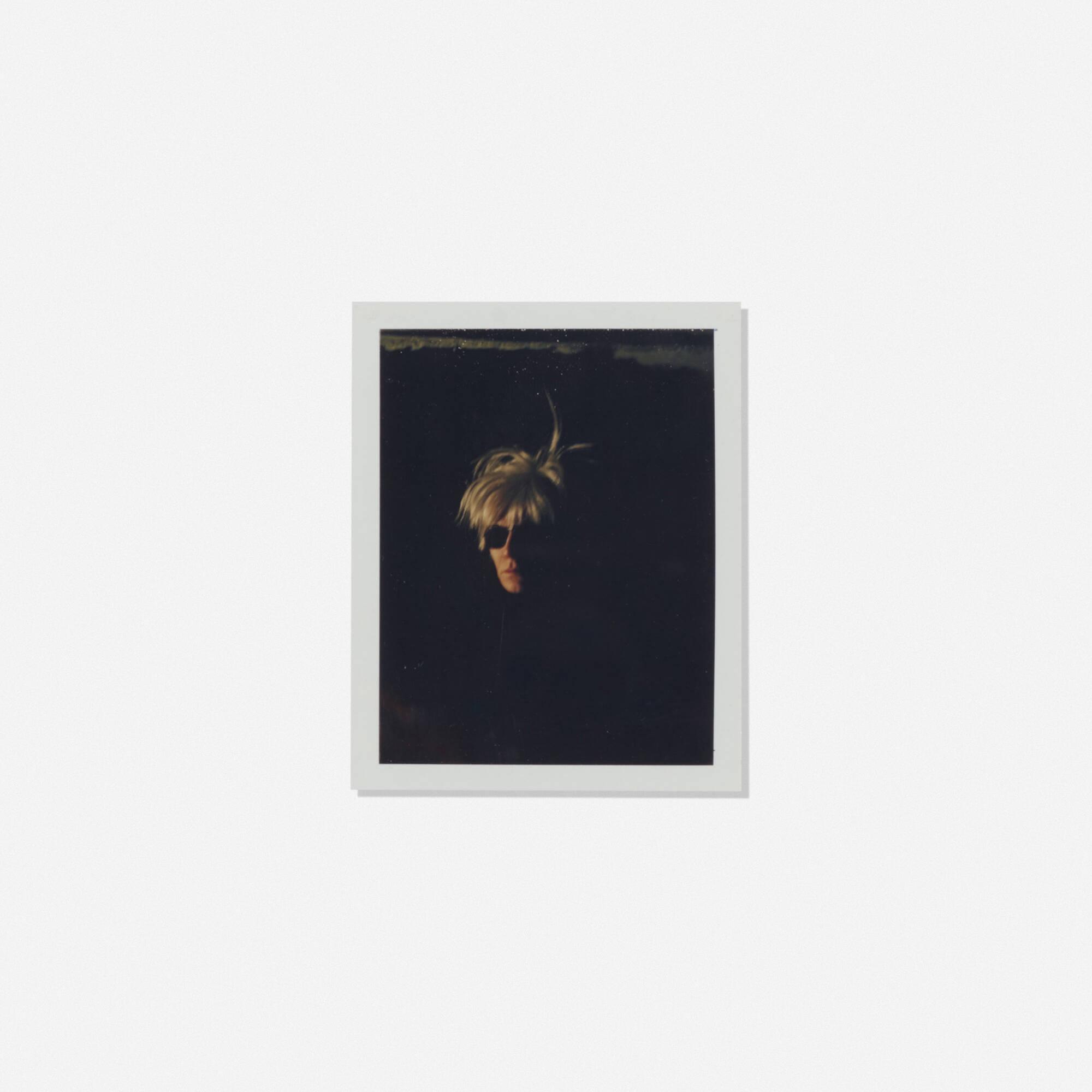 209: Andy Warhol / Self-portrait (Fright Wig) (1 of 1)