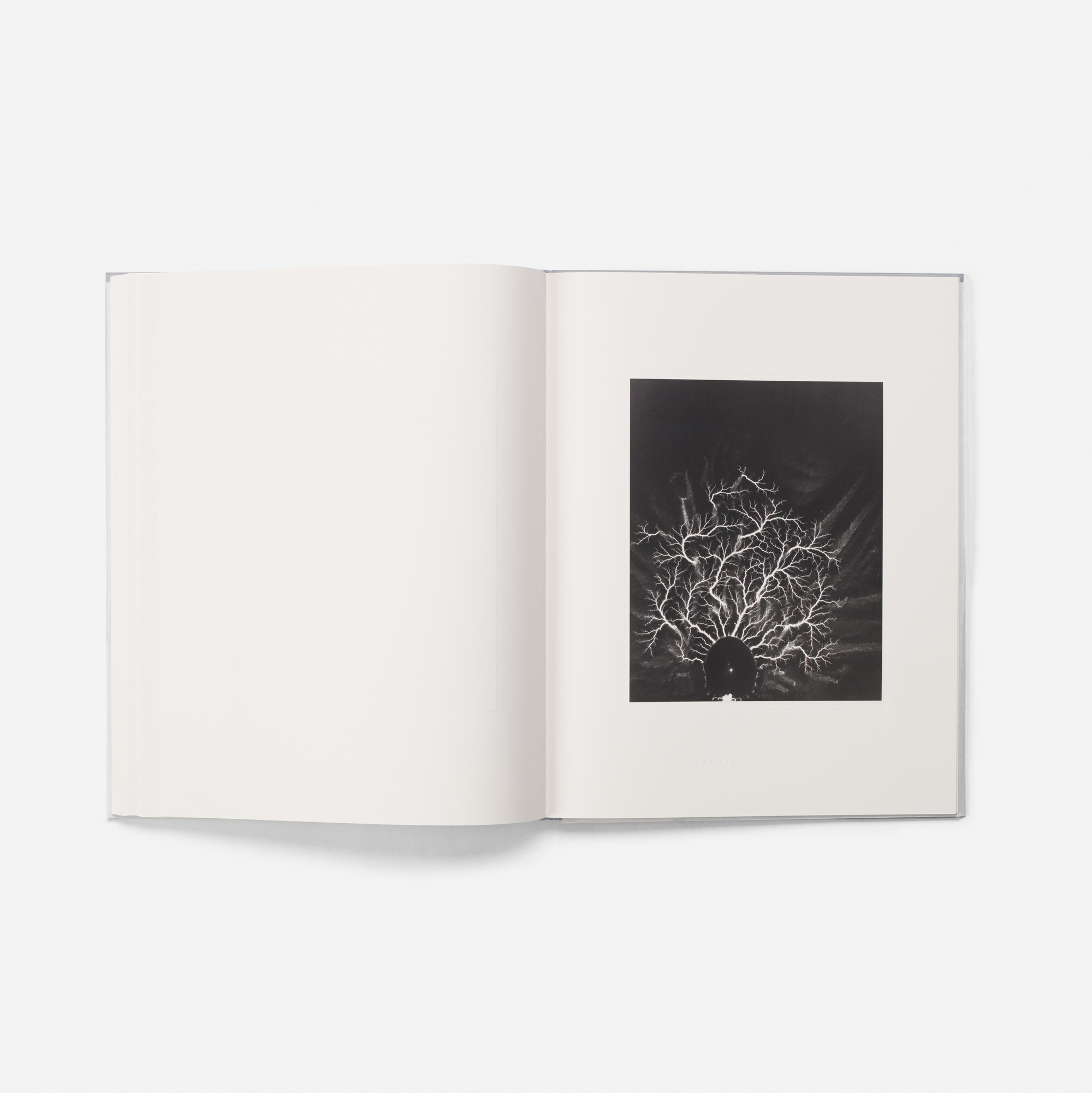 230: Hiroshi Sugimoto / The Long Never and Lightning Fields 304 (6 of 10)