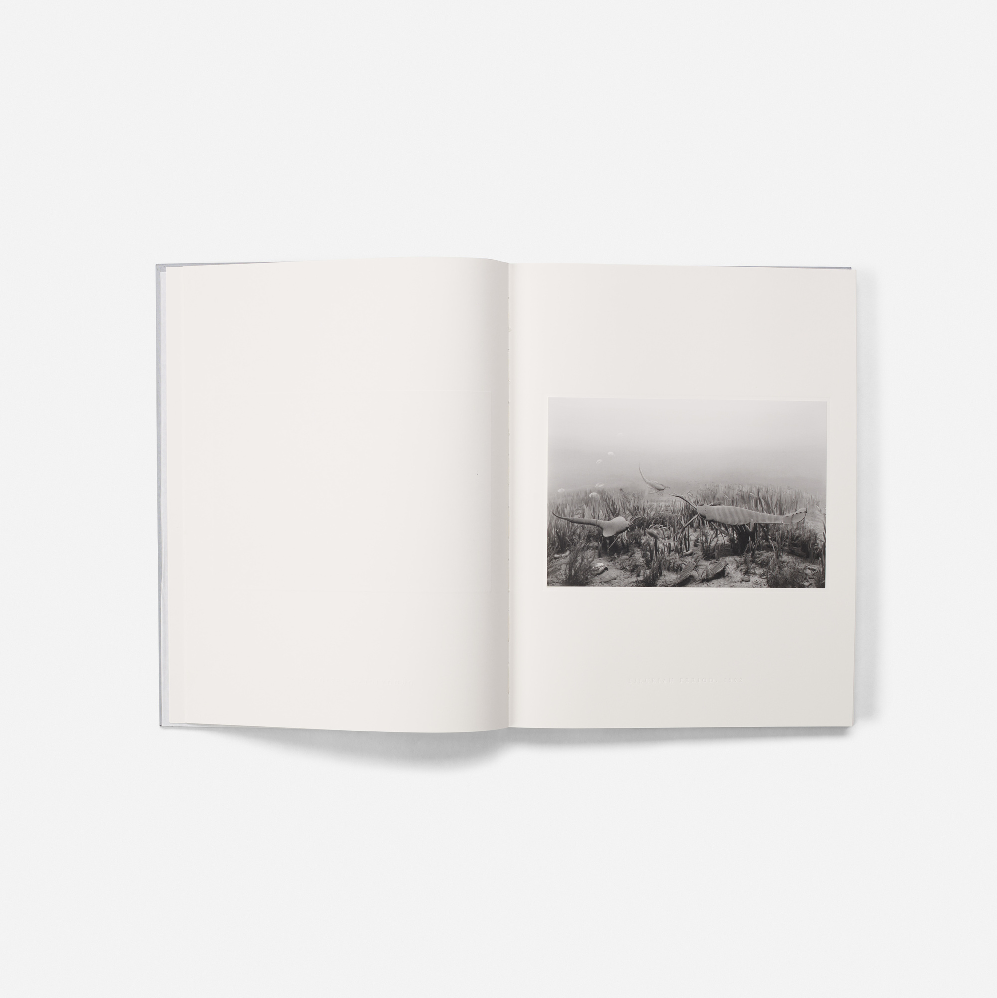 230: Hiroshi Sugimoto / The Long Never and Lightning Fields 304 (9 of 10)