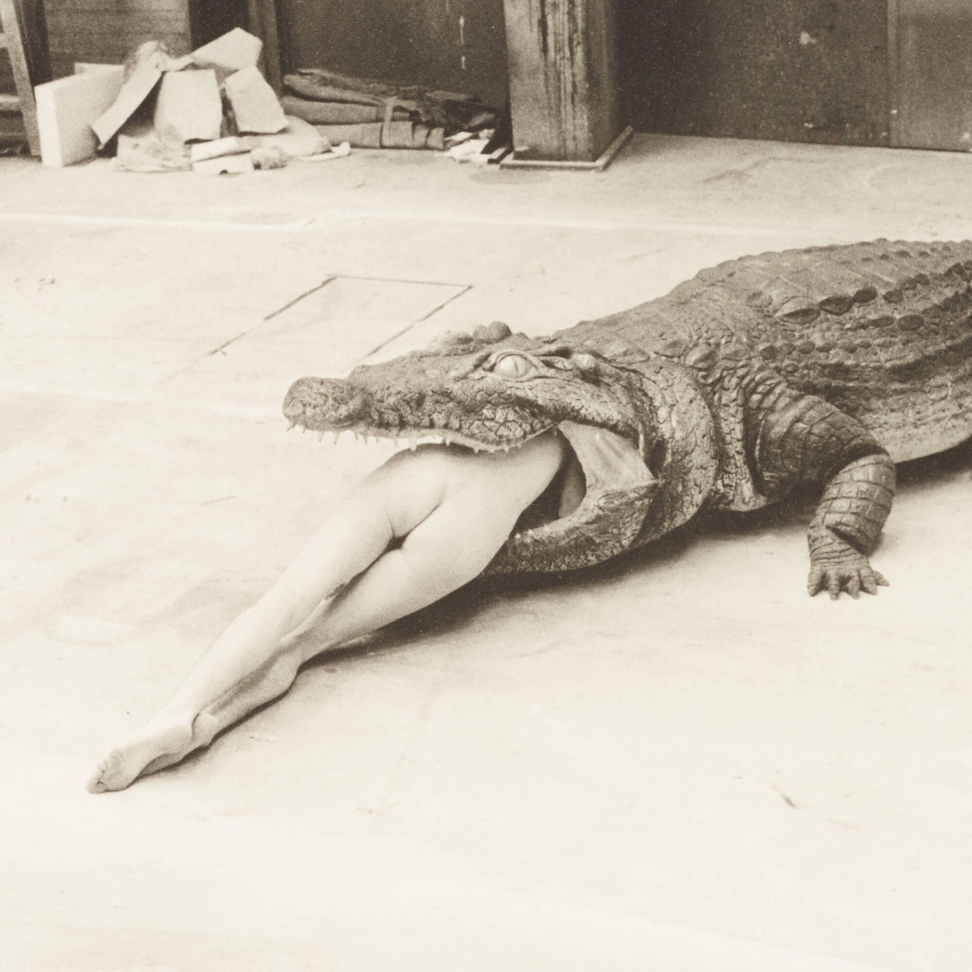 292: Helmut Newton / Crocodile Eating Ballerina (2 of 3)