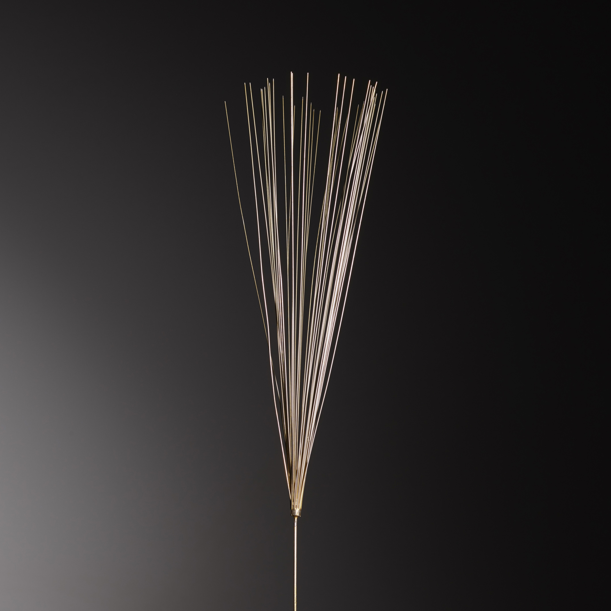 385: Harry Bertoia / Untitled (Dandelion Fragment) (2 of 2)